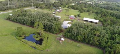1650 Absher Road, Saint Cloud, FL 34771 - #: O5534077