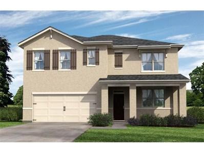 16168 Yelloweyed Drive, Clermont, FL 34714 - MLS#: O5540351
