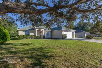 650 Park Valley Circle, Minneola, FL 34715 - MLS#: O5544384