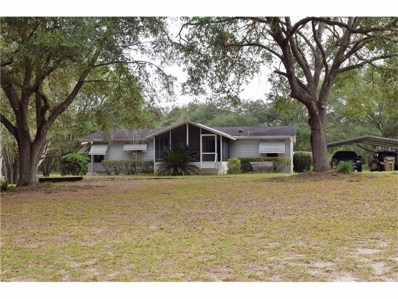 30520 Swan Road, Sorrento, FL 32776 - MLS#: O5545712