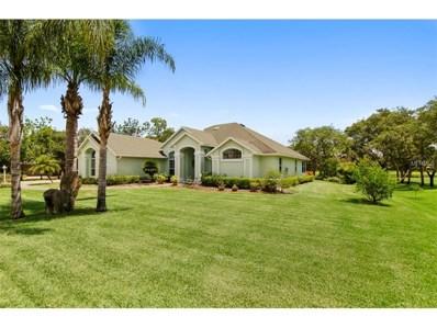 509 Boxwood Lane, New Smyrna Beach, FL 32168 - MLS#: O5546927