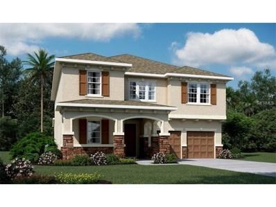 3164 Dark Sky Drive, Harmony, FL 34773 - MLS#: O5547661