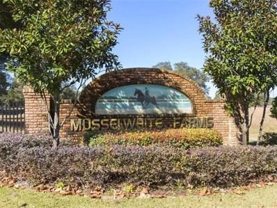 29147 Can Do Lane, Tavares, FL 32778 - MLS#: O5548778