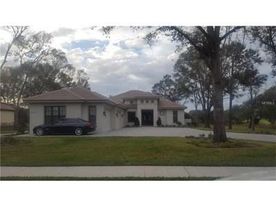 32221 Red Tail Boulevard, Sorrento, FL 32776 - MLS#: O5551259