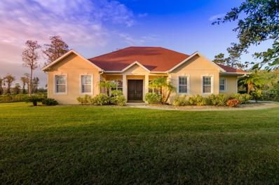 20517 Reynolds Parkway, Orlando, FL 32833 - MLS#: O5552033