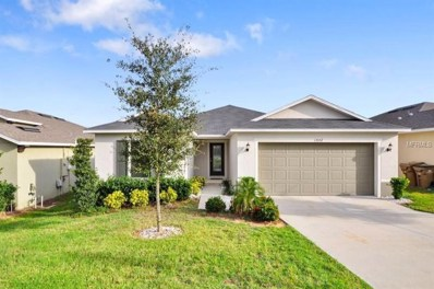 13552 Pitanga Street, Clermont, FL 34711 - #: O5552877