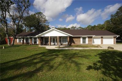 117 Pine Tree Drive, Ormond Beach, FL 32174 - MLS#: O5553393