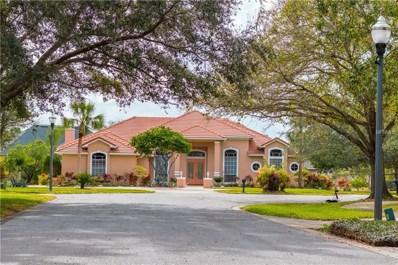 2113 Grove Point Lane, Windermere, FL 34786 - MLS#: O5558883