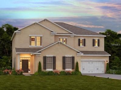 4731 Butler National Drive, Wesley Chapel, FL 33543 - MLS#: O5559729