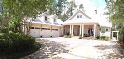 13020 Roberts Island Road, Orlando, FL 32832 - MLS#: O5565097