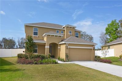 1250 Merion Drive, Mount Dora, FL 32757 - MLS#: O5565435