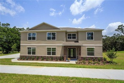 30319 Plymouth Creek Circle, Sorrento, FL 32776 - MLS#: O5566921