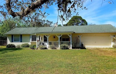 3442 Brevard Road, Mims, FL 32754 - MLS#: O5567470
