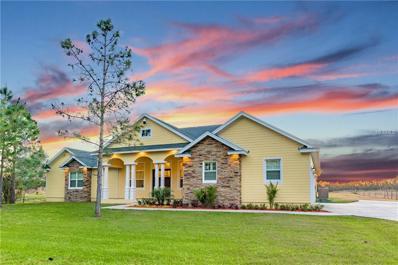 12525 Sweet Hill Road, Polk City, FL 33868 - MLS#: O5569561