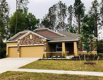 23528 Stream Avenue, Sorrento, FL 32776 - MLS#: O5571745
