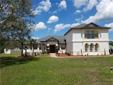 810 Brumley Road, Chuluota, FL 32766 - MLS#: O5573135