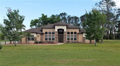 21320 Marsh View Court, Clermont, FL 34715 - MLS#: O5573378