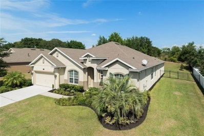 11704 Buttonhook Drive, Clermont, FL 34711 - MLS#: O5573902