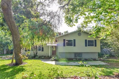 1824 Crestview Drive, Mount Dora, FL 32757 - MLS#: O5704430