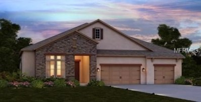 10510 Alcon Blue Drive, Riverview, FL 33578 - MLS#: O5706423