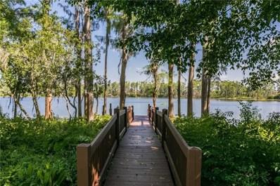 10406 Sparkle Court, Orlando, FL 32836 - MLS#: O5706817