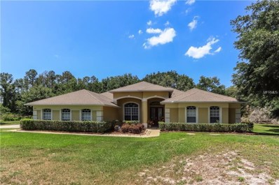 824 Snow Hill Road, Geneva, FL 32732 - MLS#: O5706985