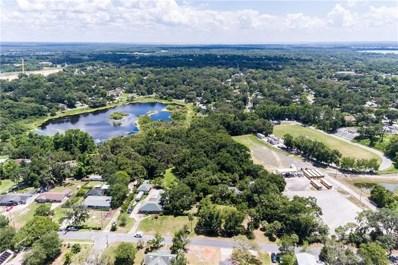 1328 E 8TH Avenue, Mount Dora, FL 32757 - MLS#: O5707686