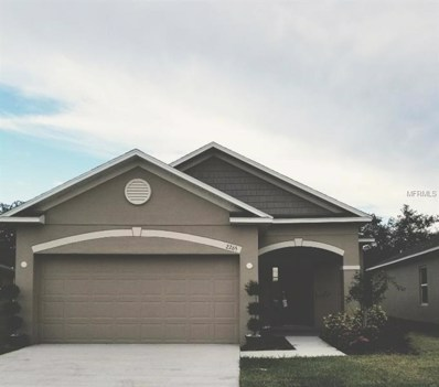 2265 Canyon Breeze, Kissimmee, FL 34746 - MLS#: O5709432