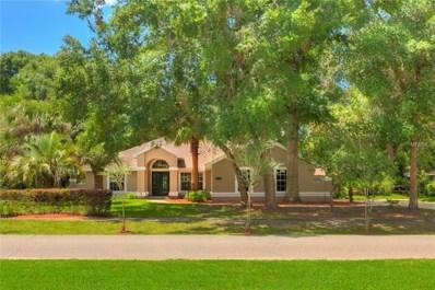 426 W Holly Drive, Orange City, FL 32763 - MLS#: O5710340