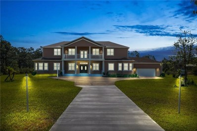 6031 Bancroft Boulevard, Orlando, FL 32833 - MLS#: O5714442