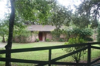 3421 Rex Drive, Winter Garden, FL 34787 - MLS#: O5715372
