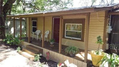 20072 Wildwood Drive, Brooksville, FL 34601 - MLS#: O5715427
