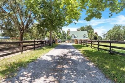 10717 S Em En El Grove Road, Leesburg, FL 34788 - MLS#: O5715836