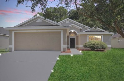 1033 Shale Trail Street, Apopka, FL 32703 - MLS#: O5720481