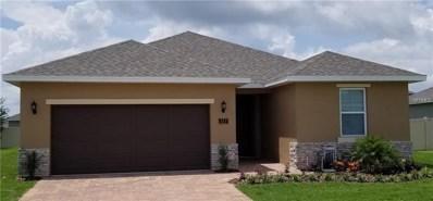 699 S Dixie Drive, Howey In The Hills, FL 34737 - MLS#: O5722373
