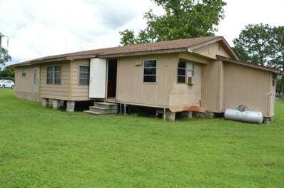 18802 Merrich Road, Orlando, FL 32820 - MLS#: O5723092