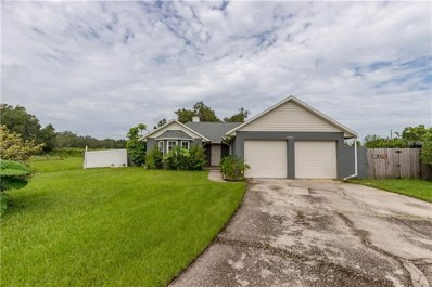 1680 Big Oak Lane, Kissimmee, FL 34746 - #: O5723371
