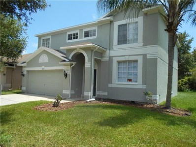 18177 Sandy Pointe Drive, Tampa, FL 33647 - MLS#: O5724236