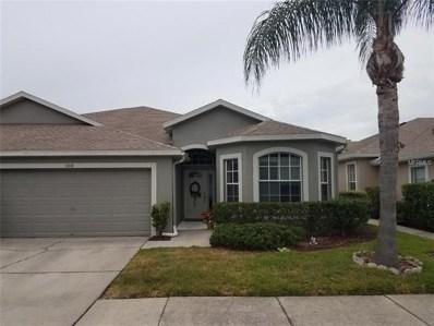 10118 Mowry Lane, Tampa, FL 33625 - MLS#: O5725497