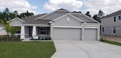 10280 Harmony Ridge Drive, Clermont, FL 34711 - MLS#: O5726553