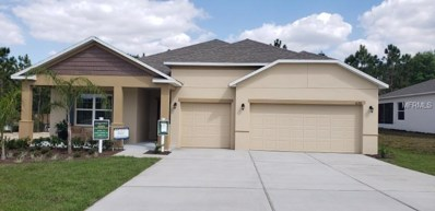 10288 Harmony Ridge Way, Clermont, FL 34711 - MLS#: O5726562