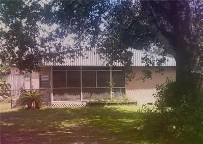 1025 Dennis Avenue, Orlando, FL 32807 - #: O5728286