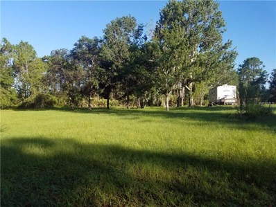 996 Stafford Trail, Geneva, FL 32732 - MLS#: O5729106