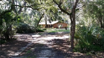 981 Lake Harney Road, Geneva, FL 32732 - MLS#: O5729903
