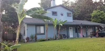 2114 Needle Palm Drive, Edgewater, FL 32141 - MLS#: O5730864