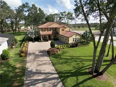3865 W Stillwood Lane, Lake Mary, FL 32746 - MLS#: O5731500