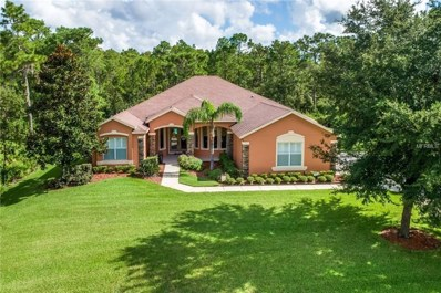 14133 Bella Lane, Orlando, FL 32832 - MLS#: O5731829