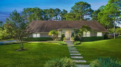 14220 Tilden Rd, Winter Garden, FL 34787 - MLS#: O5732847