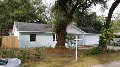 5344 Cherry Avenue, Seffner, FL 33584 - #: O5733321