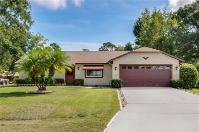 3025 Vista Palm Drive, Edgewater, FL 32141 - MLS#: O5733744